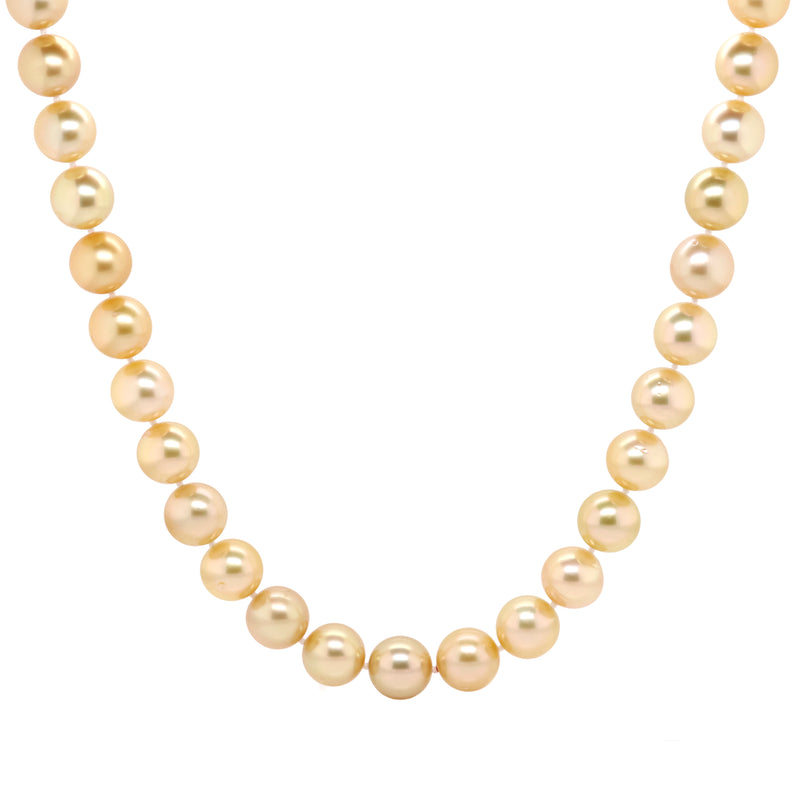 Golden south sea's necklace 11-12mm - Duffs Jewellers