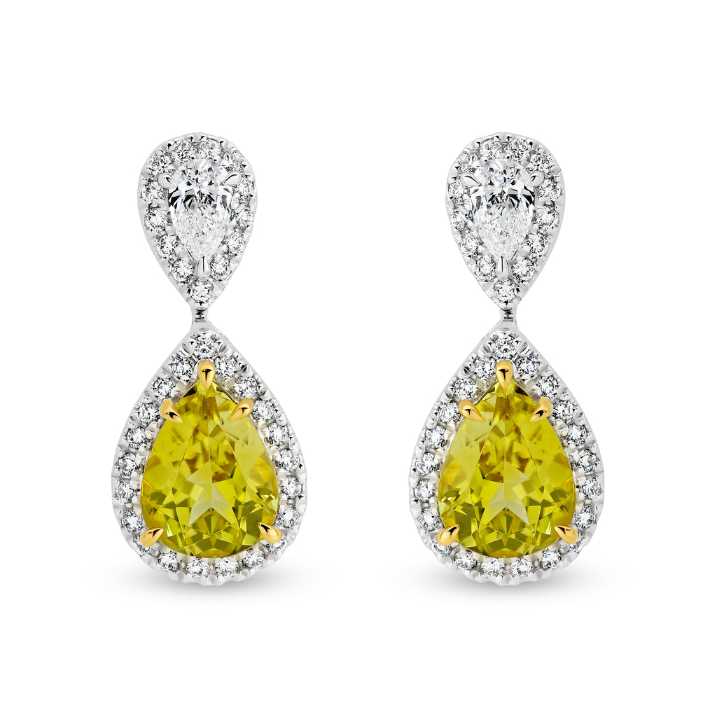 18ct White gold canary tourmalines earrings - Duffs Jewellers