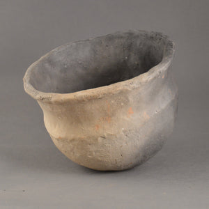 Carinated  Bowl