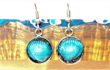 Load image into Gallery viewer, Seashell w/ Black Sand / Silver Wire Hook Earrings