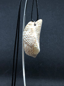 Medium Seashell - Black Cord Necklace