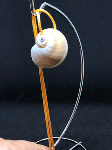 Medium Seashell - Orange Cord Necklace