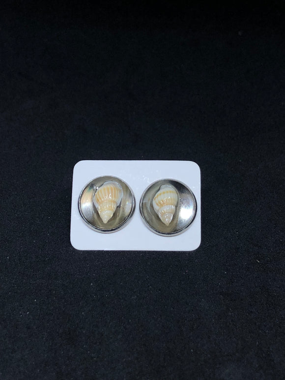 Seashell / Silver Stud Earrings