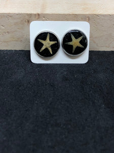 Starfish w/ Black Sand / Silver Stud Earrings