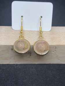 Seashell w/ Pink Sand / Gold Wire Hook Earrings