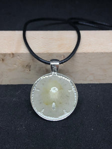 Sand Dollar / Silver Pendant - Black Cord Necklace