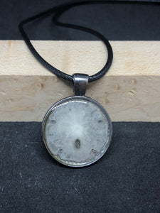 Sand Dollar / Antique Silver Pendant - Black Cord Necklace