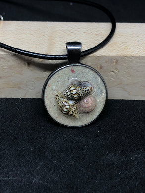 Seashell Trio w/ Pink Sand / Antique Silver Pendant - Black Cord Necklace