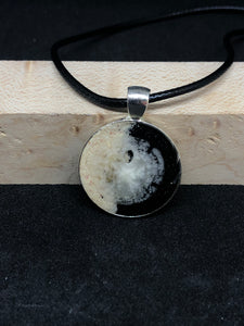 Sand Dollar w/ Black and Pink Sand / Chrome Pendant - Black Cord Necklace