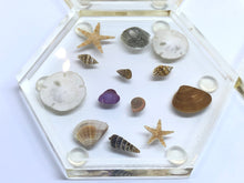 Load image into Gallery viewer, Large Hexagon Coasters with Seashells