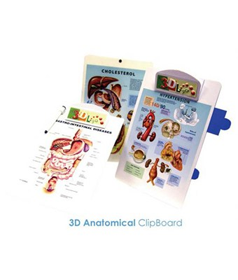 3D Anatomical ClipBoard - Tredan Connections