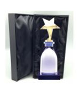 Star of Wonder Trophy - Tredan Connections