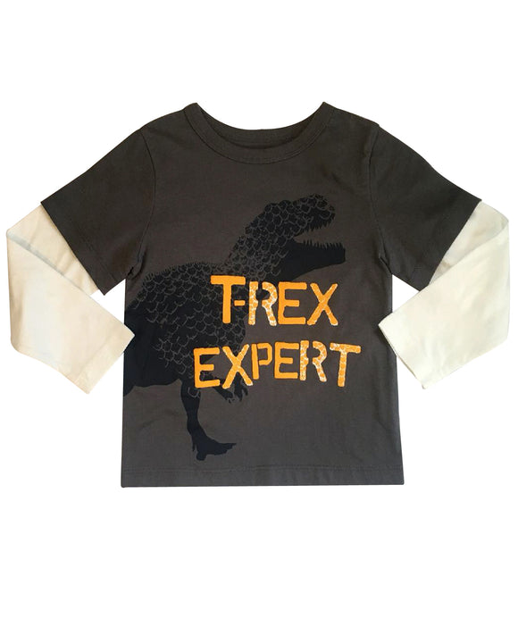 Toddler Boy T-Rex Long Sleeve T-shirt