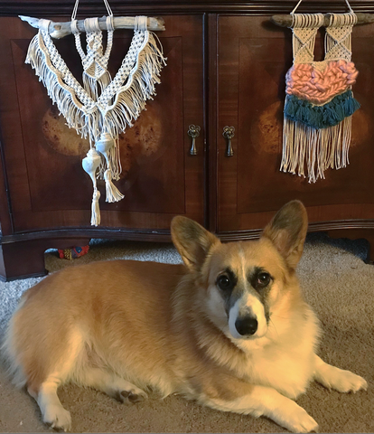 macrame home decor jewelry bracelets corgi driftwood art