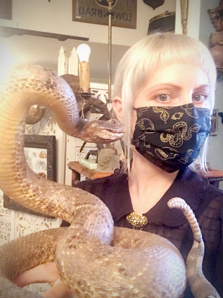 Reusable Fabric Face Mask Snakes and Skulls