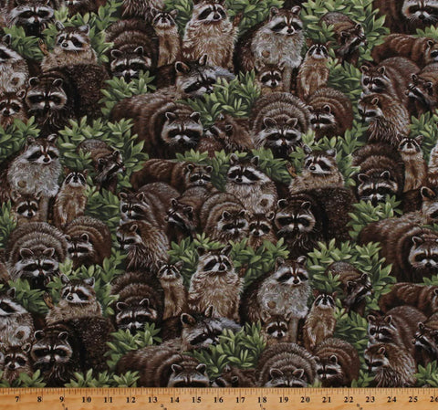 Reusable Fabric Face Mask Raccoons
