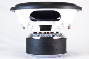 RS PLATINUM 12 2000RMS