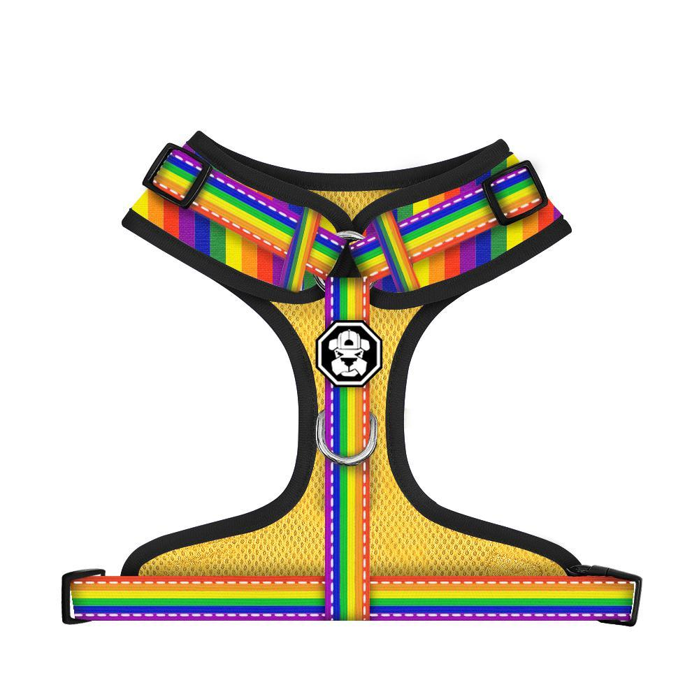 The Pride Flag | Adjustable Mesh Harness