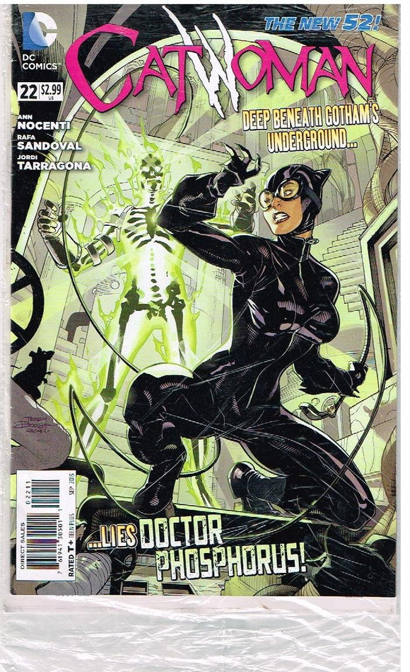 CATWOMAN # 22 DC Comic (Sep 2013) The New 52