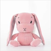 Load image into Gallery viewer, Bunny Stuffed & Plush Toy