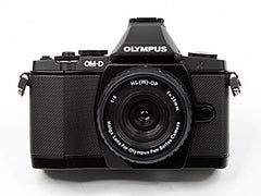 Holga Olympus PEN lens on camera