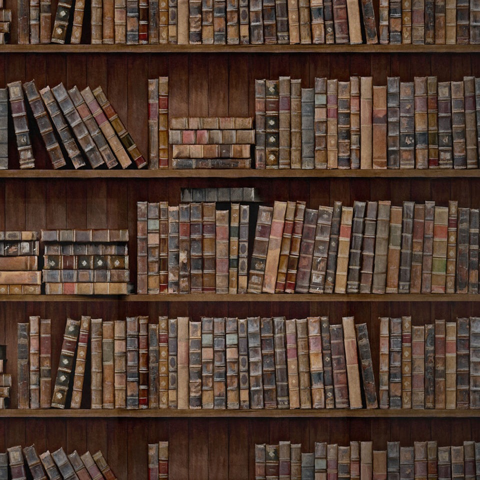 Book Shelves Wallpaper by MINDTHEGAP