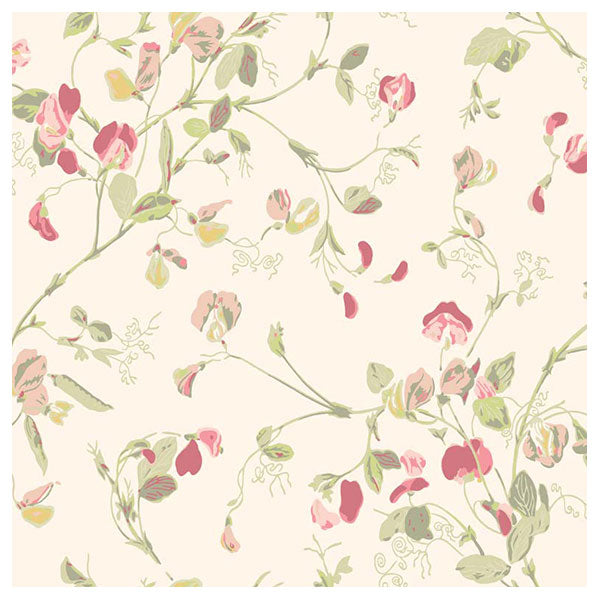 Cole & Son - Botanical Botanica -  Sweet Pea in Blush & Olive on Cream