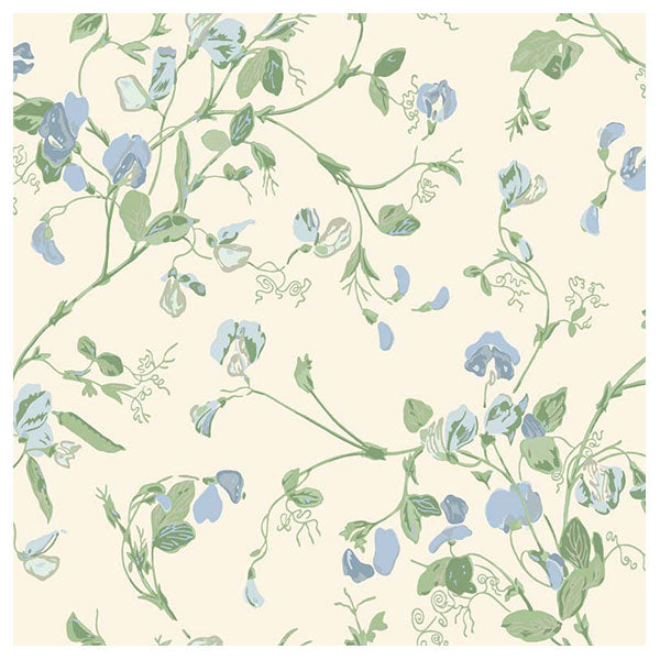 Cole & Son - Botanical Botanica -  Sweet Pea in Cerulean Sky & Sage on White