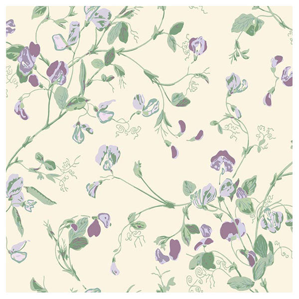 Cole & Son - Botanical Botanica -  Sweet Pea in Mulberry & Sage on Cream