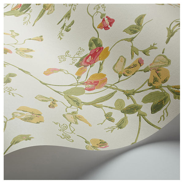 Cole & Son - Botanical Botanica -  Sweet Pea in Ochre & Rose on Parchment