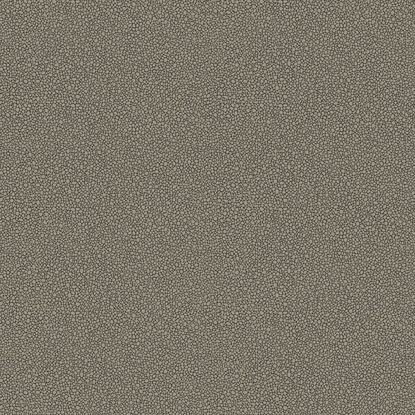 Cole & Son Wallpaper - Curio - Goldstone in Black & Silver