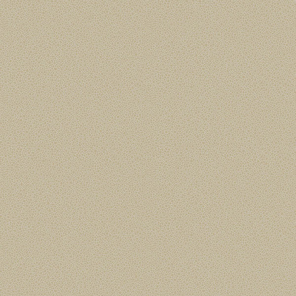 Cole & Son Wallpaper - Curio - Goldstone in Stone & Gilver