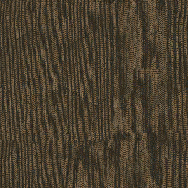 Cole & Son Wallpaper - Curio - Mineral in Black & Bronze