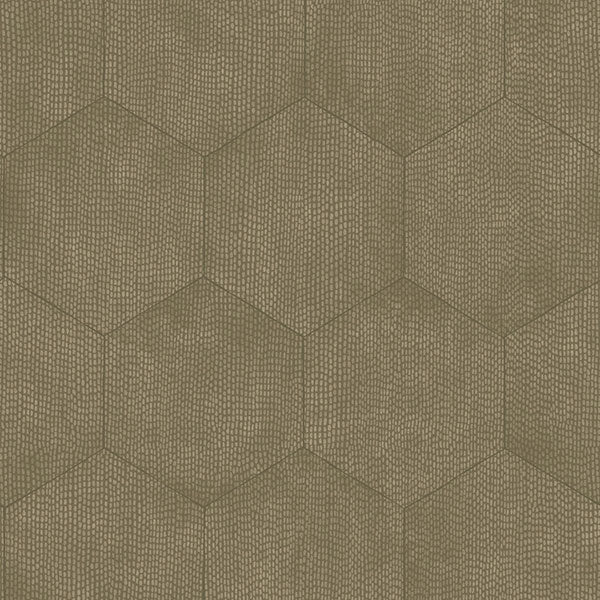 Cole & Son Wallpaper - Curio - Mineral in Taupe