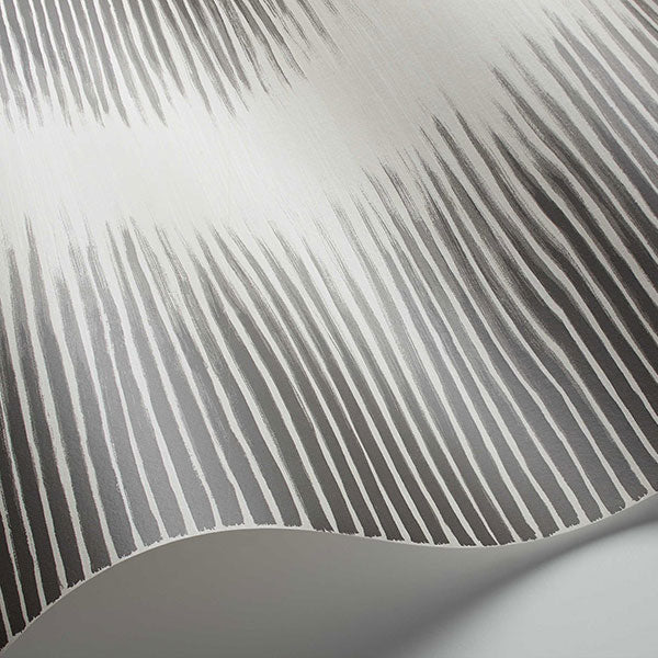 Cole & Son Wallpaper - Curio - Plume in Black & White