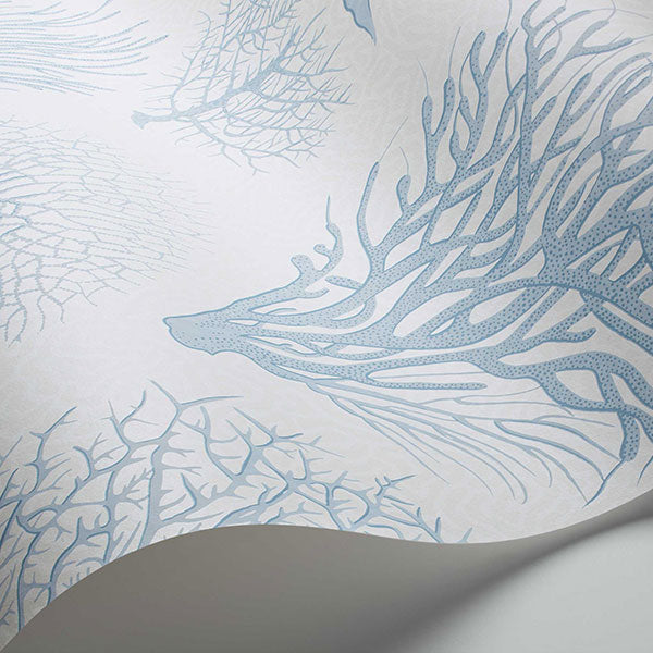 Cole & Son Wallpaper - Curio - Seafern in Blue