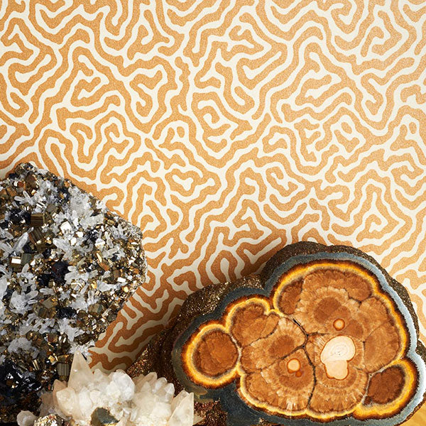 Cole & Son Wallpaper - Curio - Vermicelli in Buff & Gold