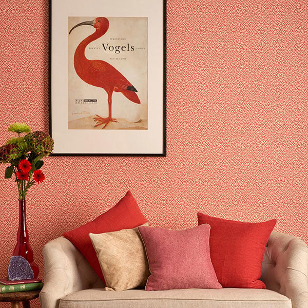 Cole & Son Wallpaper - Curio - Vermicelli in Coral