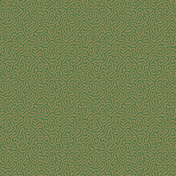 Cole & Son Wallpaper - Curio - Vermicelli in Green & Gold
