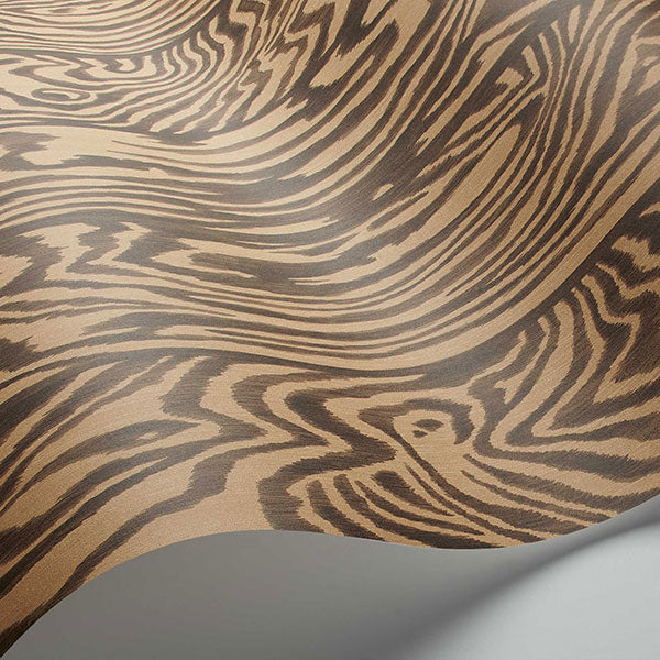 Cole & Son - Curio - Zebrawood in Tiger