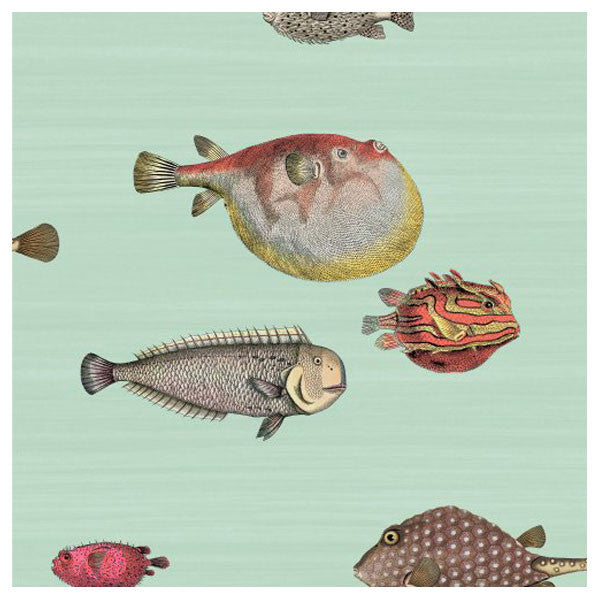 Cole & Son - Fornasetti II Acquario Wallpaper - Pale Blue / Multi - Vertigo Home