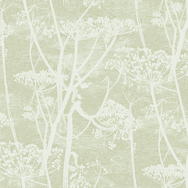Cole & Son Wallpaper - Icons - Cow Parsley in Olive