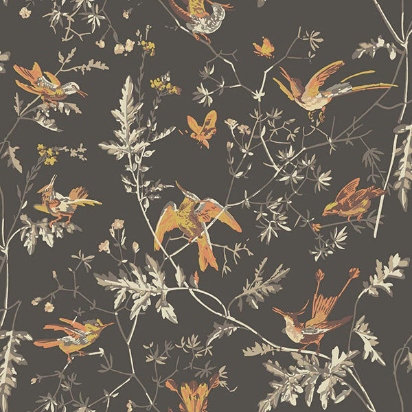 Cole & Son Wallpaper - Icons - Hummingbirds in Charcoal & Ginger