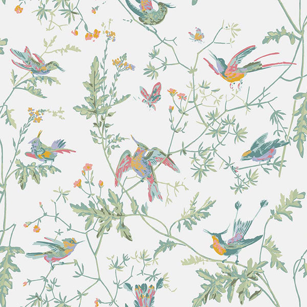 Cole & Son Wallpaper - Icons - Hummingbirds in Pastel