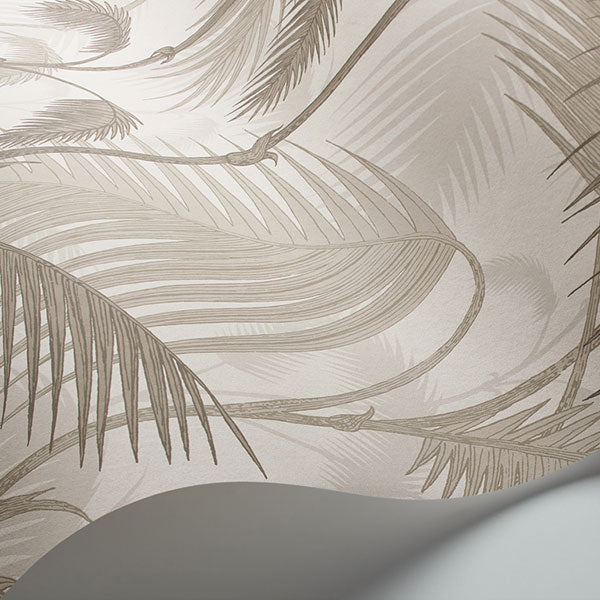 Cole & Son - Icons - Palm Jungle in Stone & Taupe