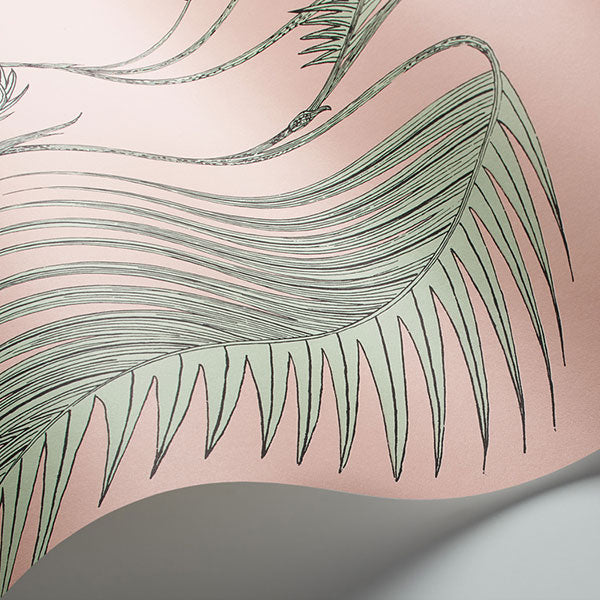 Cole & Son - Icons - Palm Leaves in Plaster Pink & Mint