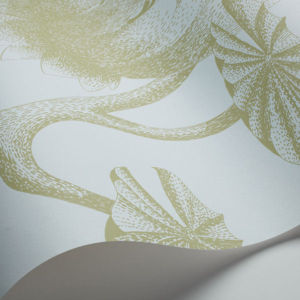 Cole & Son - New Contemporary II - Lily in Sage & Pale Blue