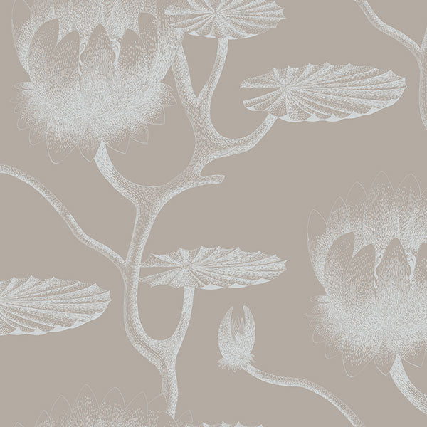 Cole & Son - New Contemporary II - Lily in White & Grey