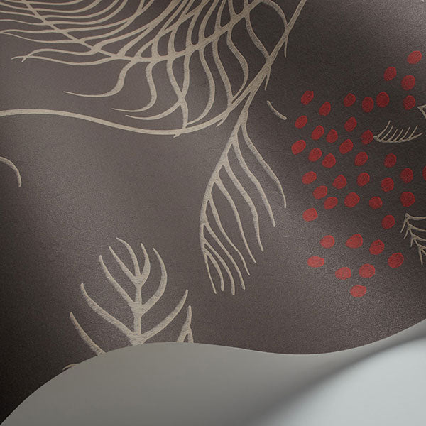 Cole & Son Wallpaper - New Contemporary II - Mimosa in Charcoal