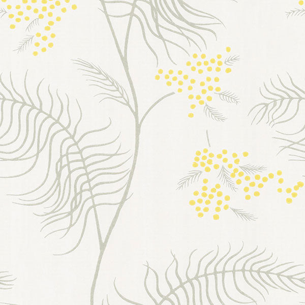 Cole & Son Wallpaper - New Contemporary II - Mimosa in White
